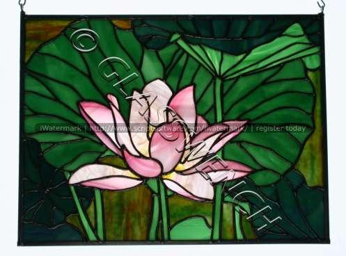 loris lotus bestwtmk