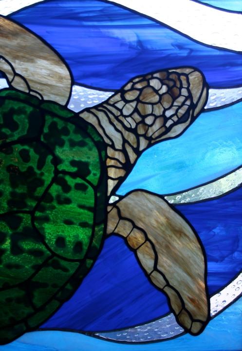 turtle detail