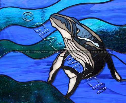 jeannes whale 4wtmk